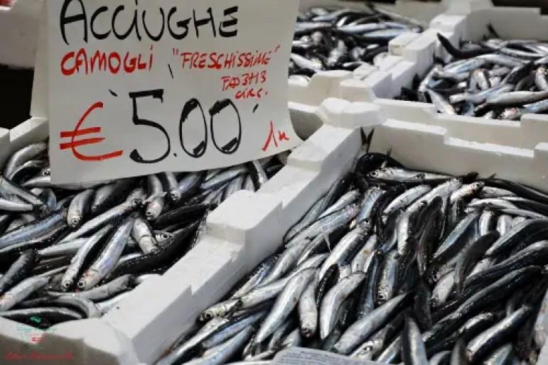 acciughe Mercato Orientale di Genova