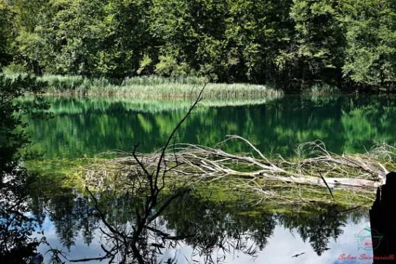 on the road nei balcani occidentali fotografie plitvice