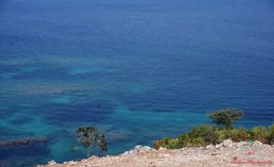 kosa vedere a kotor: il mare del montenegro.