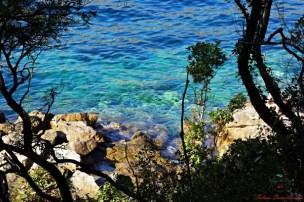 Balcani On The Road: un viaggio fotografico isola di lokrum croazia