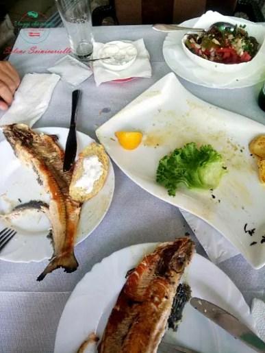 cosa fare sul lago di ohrid: mangiare la trota del lago