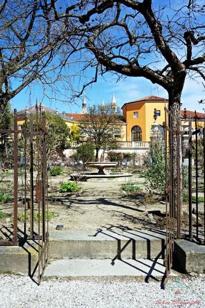 Cosa fare a Padova: visitare l'Orto Botanico, oggi Patrimonio dell'Umanità.