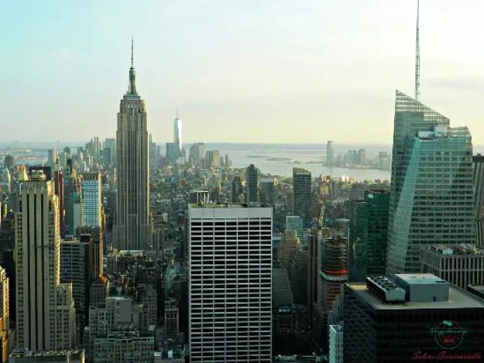 New York è la città dove è ambientato Pets - Vita da animali, uno dei cartoni animati che fanno venir voglia di viaggiare.