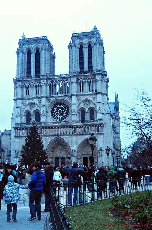 La Cattedrale di Notre Dame di Parigi fa da sfondo ad uno dei cartoni animati che fanno venir voglia di viaggiare: Il Gobbo di Notre Dame.