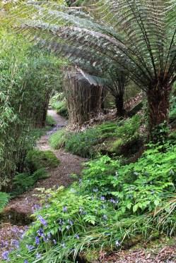 Chygurno, private garden Cornovaglia maggio 2014