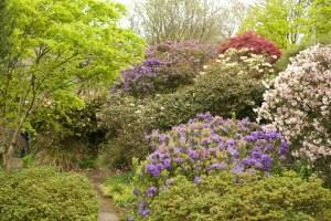 Public Path Garden House