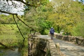 lanhydrock ponte