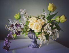 fiori marzo 3