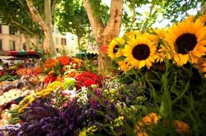 Marche place Richelme a Aix en Provence Bouches du Rhone (13) - France