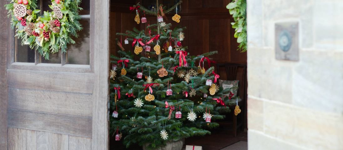 Standen Christmas 1109991