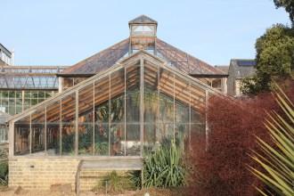 botanic gardenIMG_5248_118