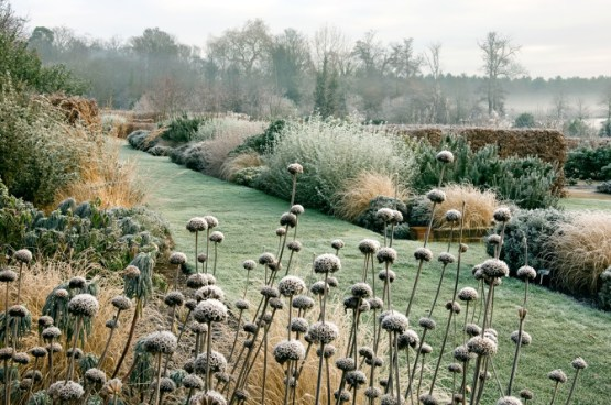 marks244 December . Winter frost . landscape garden . Owners: The Thomas Phillips Price Trust Marks Hall Estate, Coggeshall UK Jerry Harpur