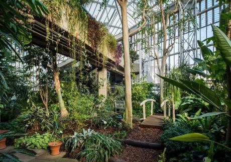 0981-HDR Conservatory, Barbican Centre, CREDIT Max Colson