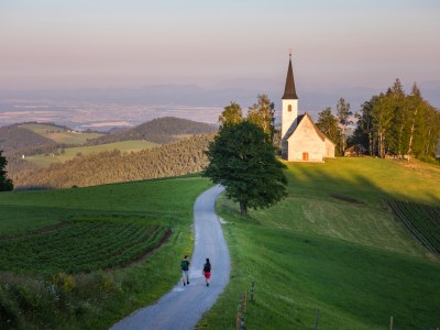 Finita l'epidemia in Slovenia