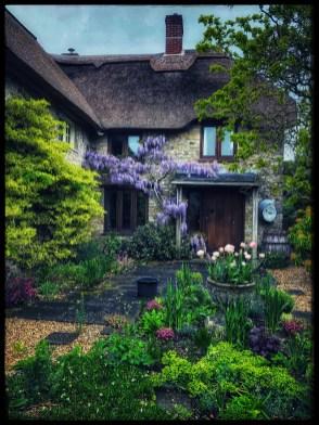 Il restro del cottage, dry garden Cleave Hill da Penny Pritchard