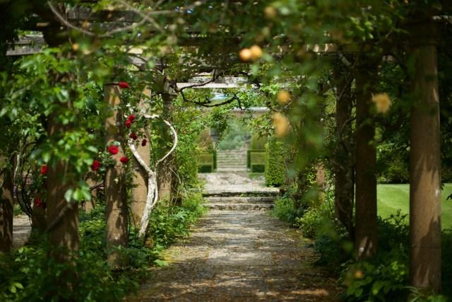 Antonietta – Roseti e Cottage Garden del Somerset