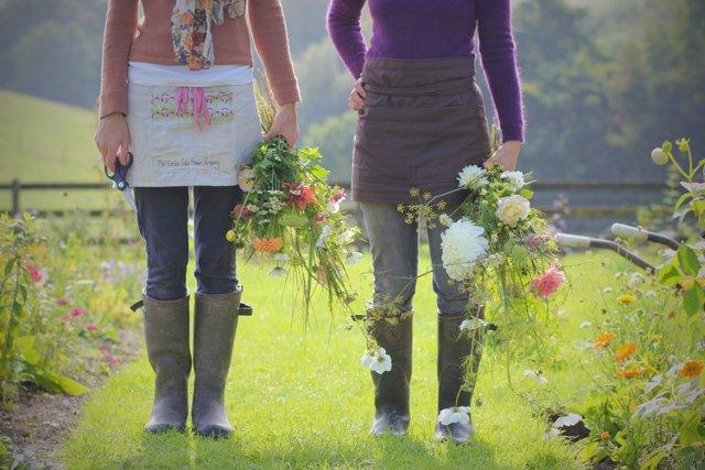 Seminare un campo di fiori da taglio 12 settembre 2021