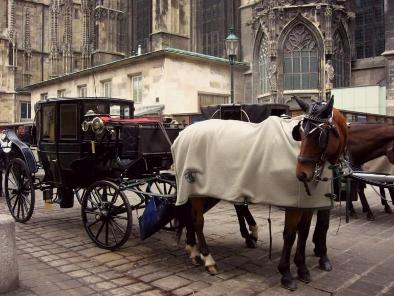 Vienna nel periodo Natalizio