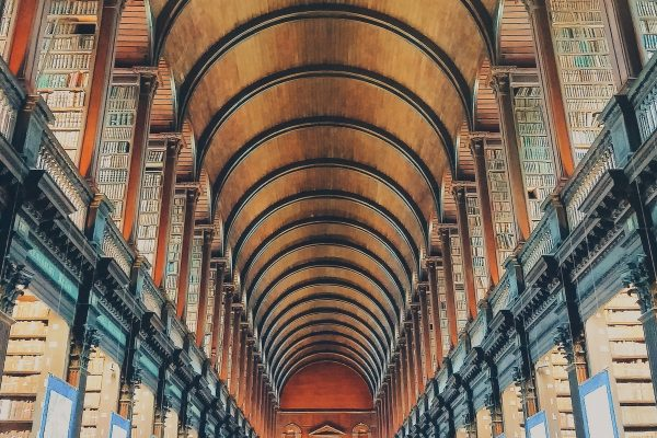 Dublino - Trinity College Library - Books, like friends, should be few and well chosen.