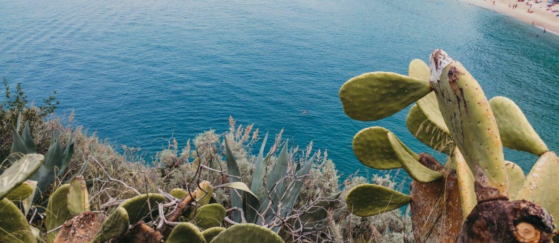 Calabria on the road: in viaggio con TiNoleggio