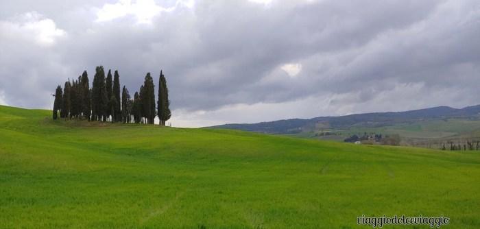 Rotonda di cipressi in Italia Centrale