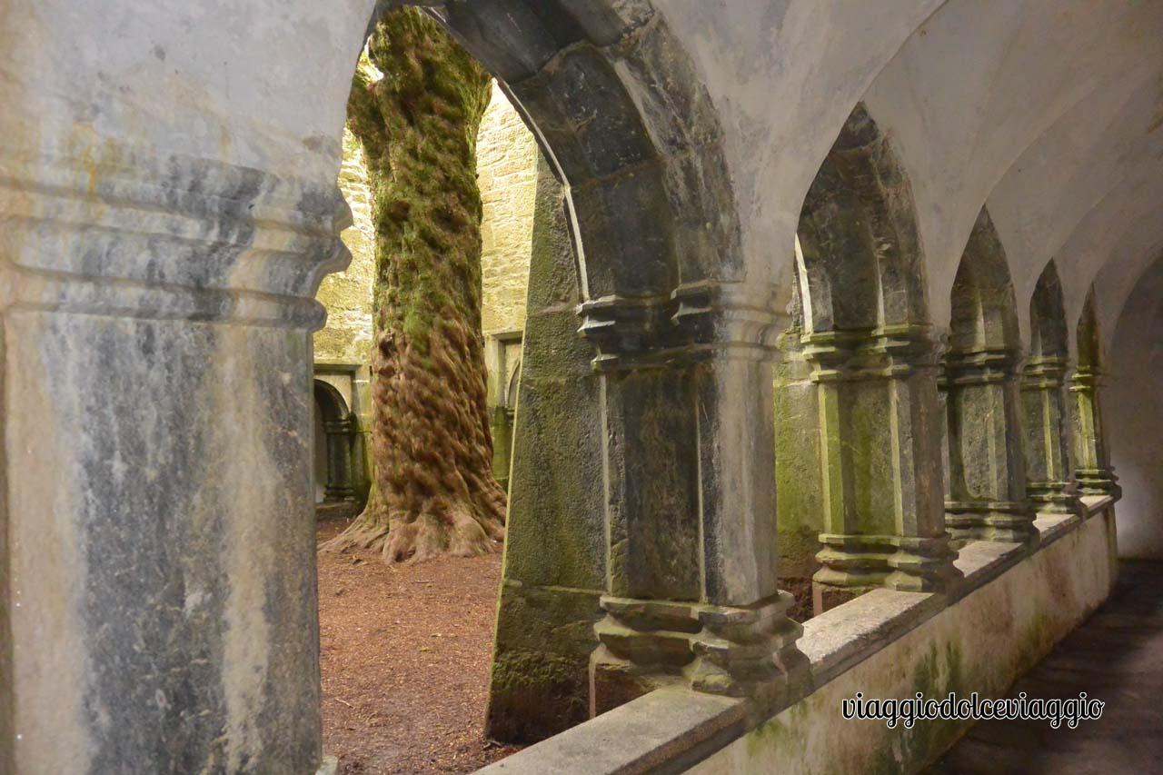 Muckross Abbey, Irlanda
