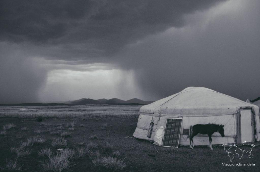 Ger mongola