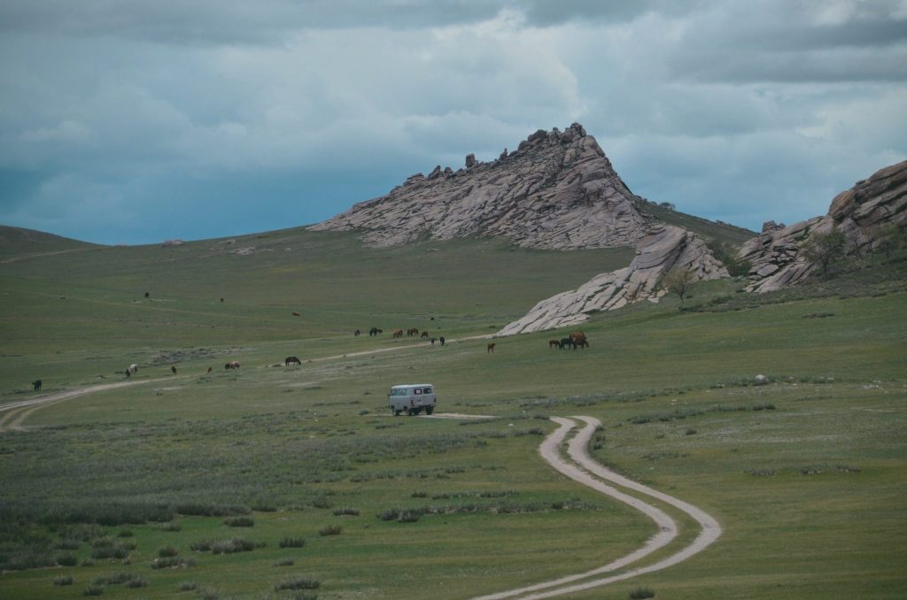 Adatsaag in Mongolia