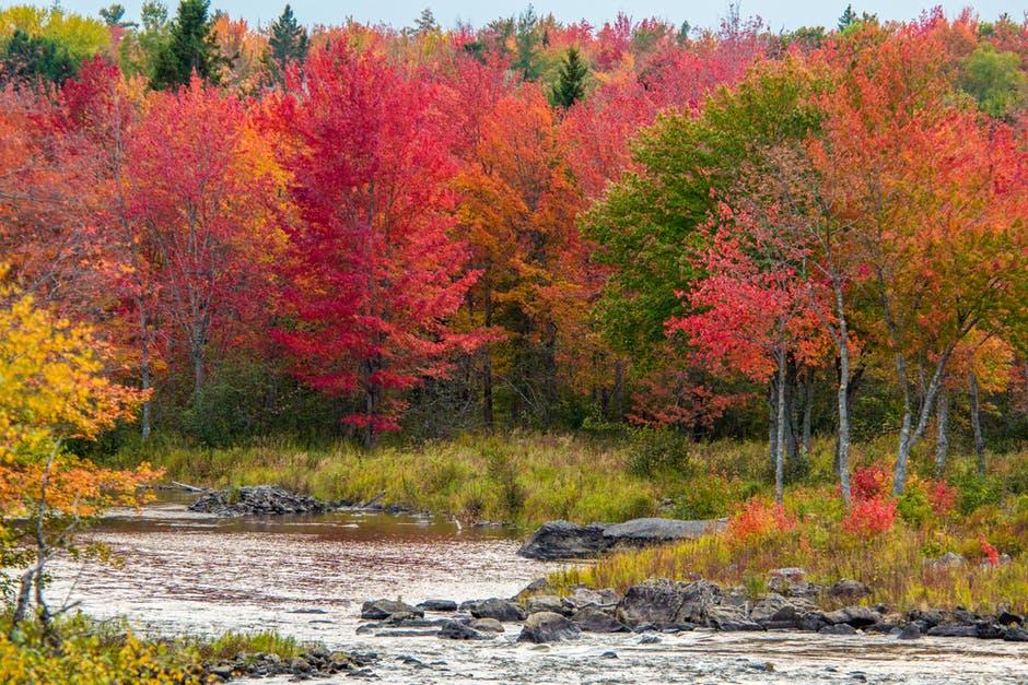 transiberiana in autunno