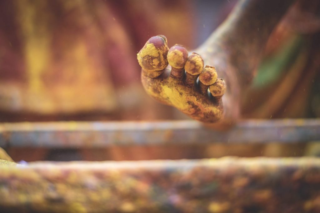 piede indiano Holi festival