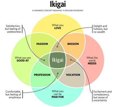 schema-su-come-trovare-ikigai