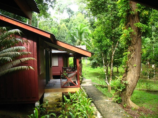 Vacanze in Malesia