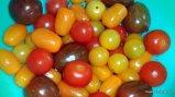 Amarillo, Verde, Rojo, naranja: Diferentes clases de mini-tomates