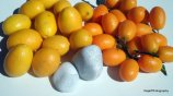 Amarillo, Naranja: Mini-limones y Kunkuat