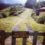 El camino de los Quetzales de Boquete a Cerro Punta