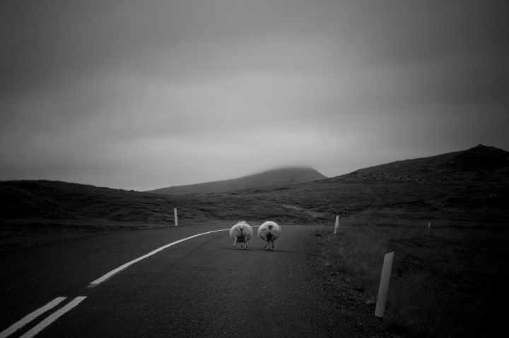 Viaje Islandia. Sonsoles Lozano