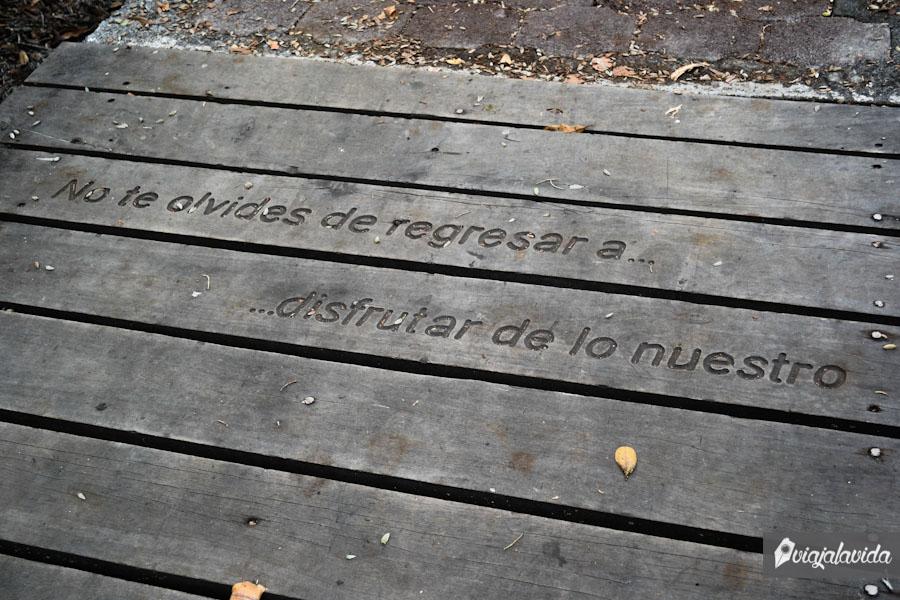 Mensaje de la Laguna de las Ninfas (visiten la galería).
