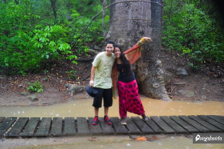 Posando junto al árbol más grande y antiguo.