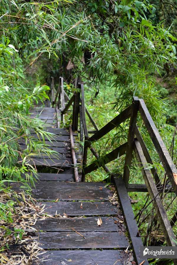 Escaleras deterioradas, en cualquier paso te caes.