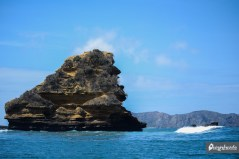 Roca King Kong.