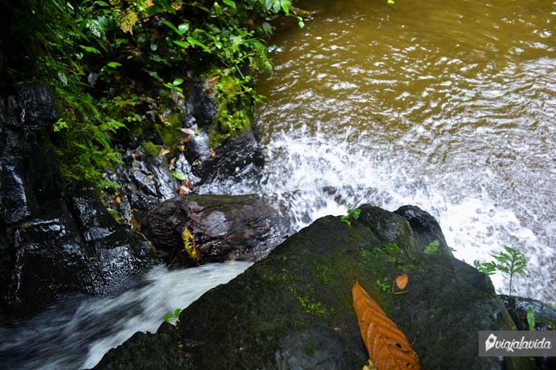 Lanzarse a la cascada de Naranjal, Costa de Ecuador.