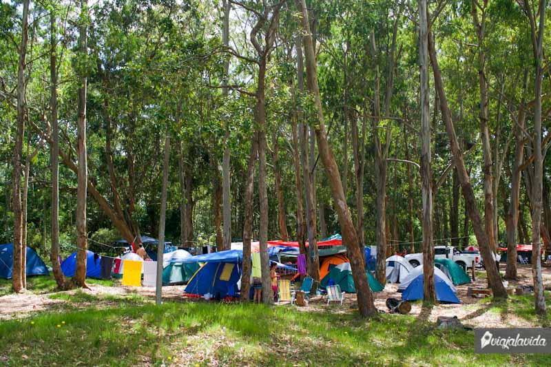 Acampando en el Parque Nacional de Santa Teresa.