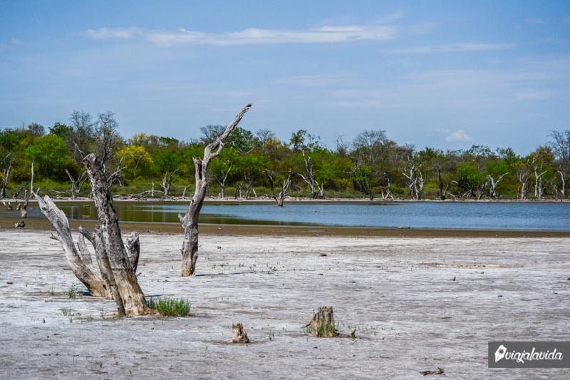 Laguna Capitán, Loma Plata.