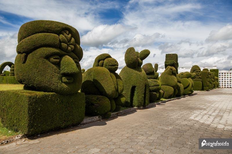 Árboles en el cementerio de Tulcán.