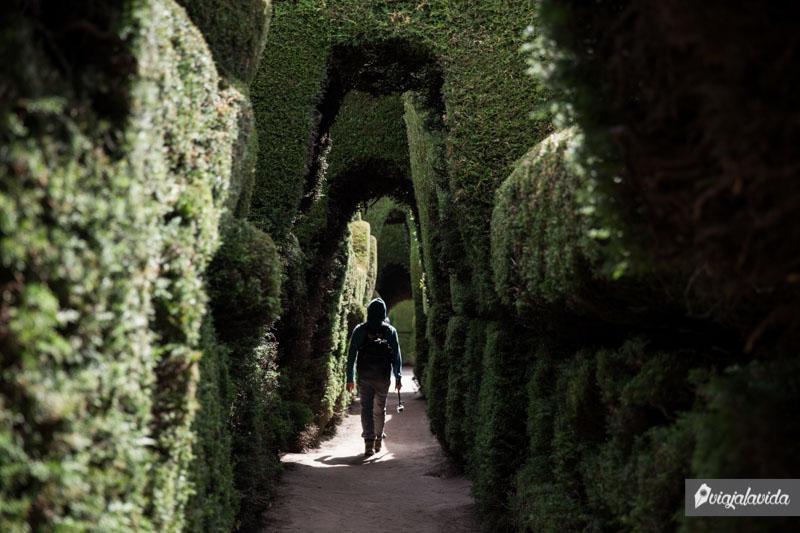 Paseos en el cementerio de Tulcán.