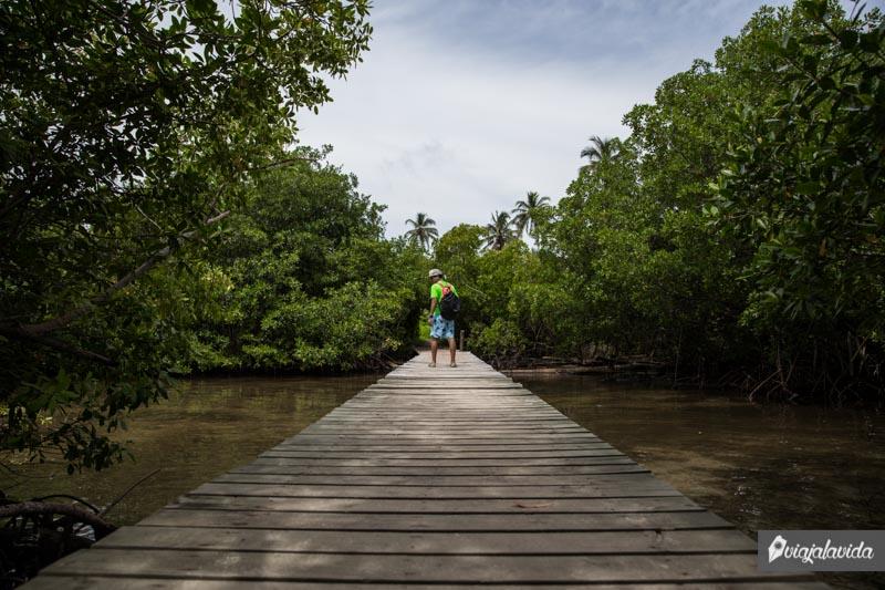 Rincones de la Isla Múcura en Colombia.