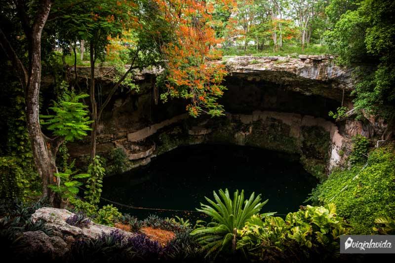 Cenote dentro de la ciudad de Valladolid.