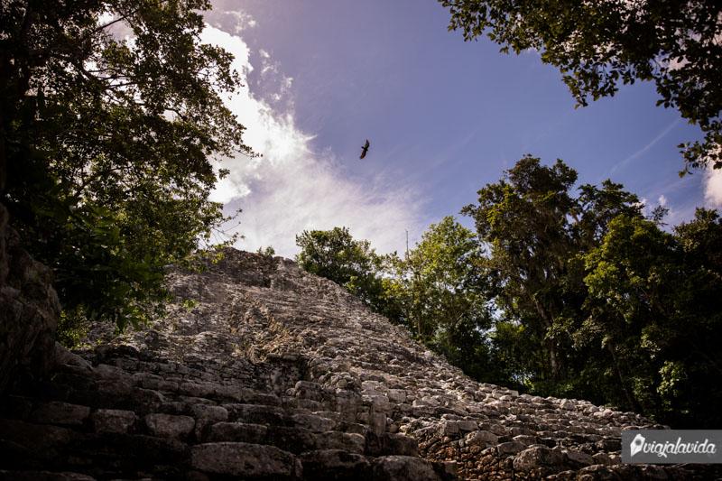 Vestigios en Zona Arqueológica de Cobá.