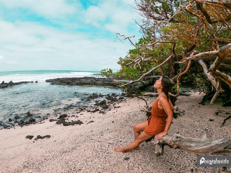 Playa Orgánica, un sitio tranquilo en Isabela
