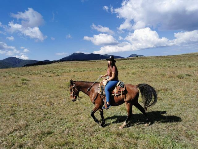 Paseo en caballo.